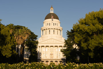 Landscaped Grounds Downtown Sacramento California Capital Dome B
