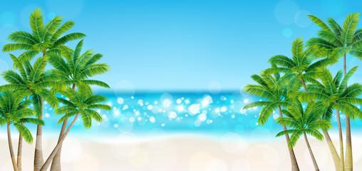 海 砂浜 ヤシの木