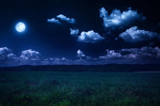 beautiful summer landscape, moonlit night on nature