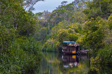 A small boat is reflected in the river along with the green leaves of the trees growing on the shore (Borneo / Kalimantan, Indonesia)