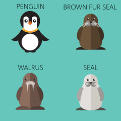 Abstract illustration with sea animals set, a penguin, walrus, brown fur walrus and seal, over a green background. Digital vector image.