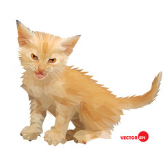 Cat vector silhouette on the white background isolated, made in low poly style. Little baby cat with an angry look, little lion. Design cat illustration for book, cartoon, card, shirts. Love kitten