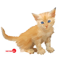 Red baby cat, little kitten vector illustration silhouette on the white background isolated, made in triangle polygons style