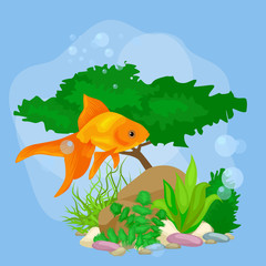 Photo sur Plexiglas Dinosaurs Underwater vector world background with fish, seaweed and bubbles
