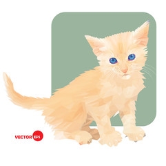 Little kitten in polygonal style on white and green background. Pet cat. Red cat. Print the cat for clothing and t-shirts, children's books, cartoon. Favorite cat