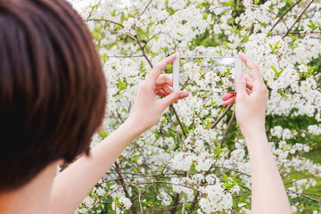 Woman takes photos of cherry blossom on a smartphone. Spring natural background