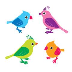 Cute birds in vector. illustration