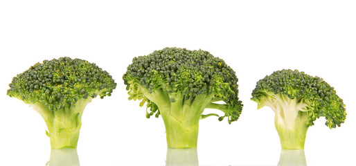 Pieces  fresh green broccoli isolated on white background