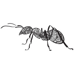 zentagle ant black and white