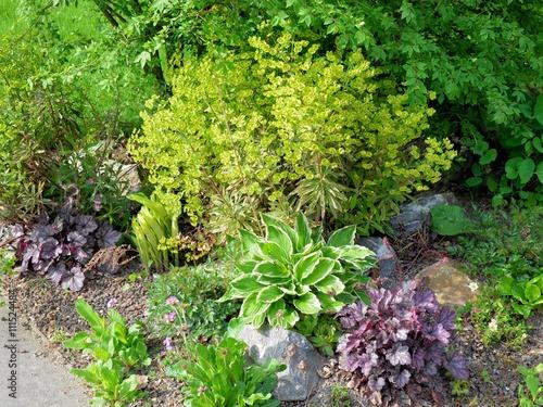 Steindekoration Garten grünpflanzen wachsen im garten mit steindekoration stockfotos und