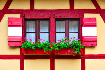 Wall Mural - Windows with flowers
