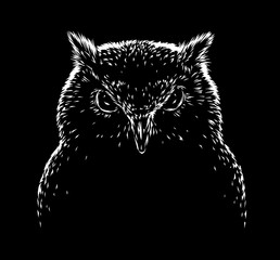 black and white engrave evil owl bird