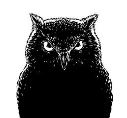 black and white engrave evil owl bird