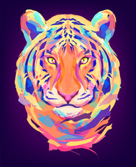 The cute colored tiger head