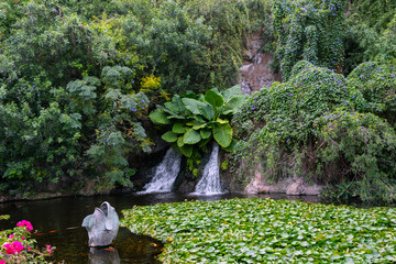 Small waterfall in the park at Tenerife island