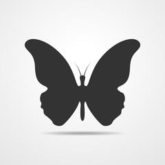 Black butterflies - vector illustration