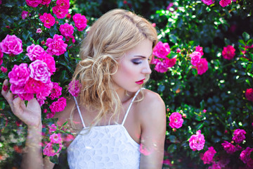 Young blonde woman near blooming pink rose bush