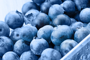 Organic blueberries in food container - close up studio shot