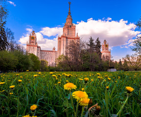 Sunset campus of Lomonosov Moscow State University under cloudy sky with yellow dandelions