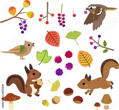 秋の木の実と小動物のイラストセット Stock Image And Royalty Free