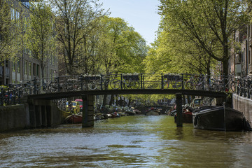 Bridge with bikes over the canal in the day in Amsterdam