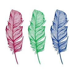 Hand drawn feathers set on white background. Design element. Vector illustration for any design.