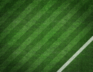 Soccer field with soccer line