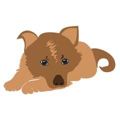 Sad puppy vector.