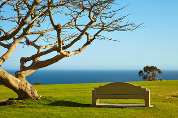 Bench on a hill near the ocean