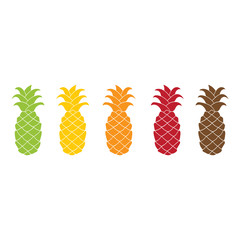 Flat pineapple icon set colorful.