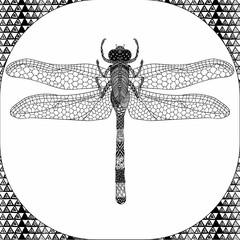 Coloring page of Balck Dragonfly, Zentangle Illustartion