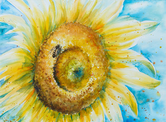 Close up of sunflower with bee .Picture created with watercolors.