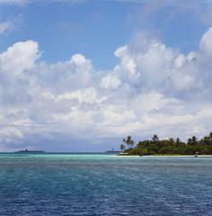 Malediveninsel mit Palmenstrand