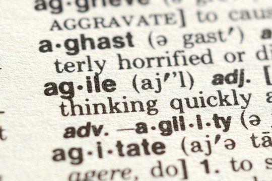 The Word Agile