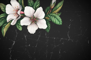 Background with watercolor cherry flowers. Perfect for greeting