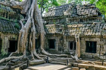 The ruins of Ta Prohm Temple in Cambodia