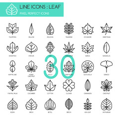 Leaf , thin line icons set ,pixel perfect icon