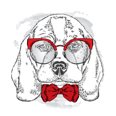 Cute puppy with glasses and tie . Vector illustration. portrait of a dog for postcards, prints on clothes or accessories .
