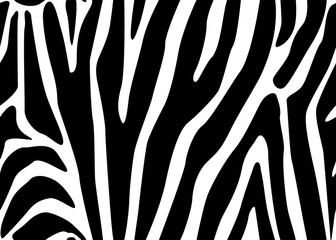 Zebra Stripes Seamless Pattern. Vector illustration