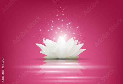 "magic white lotus flower on pink background"" stock image and, Beautiful flower"