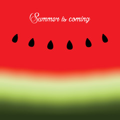Hello Summer with watermelon background. Vector illustration.