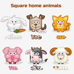 cute cartoon square Home animals
