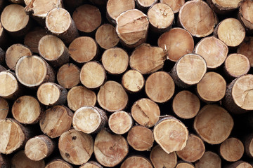 Pile of wood logs. Wood logs texture background