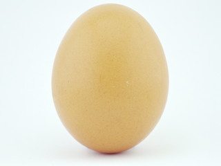 Isolated Egg with white background