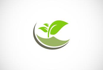 plant green leaf organic logo.