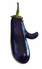funny mutant eggplant