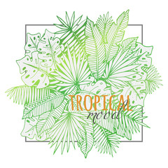 Beautiful hand drawn tropical lineart with different palm leaves. Creative drawing for prints, cards and decoration.