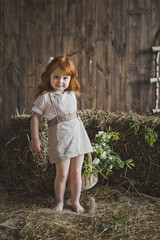 Studio portrait of red-haired little girls in the hay 6135.