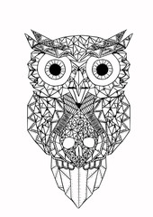 Geometrical Owl