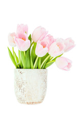 Pink tulips bouquet in vase. Isolated over white background